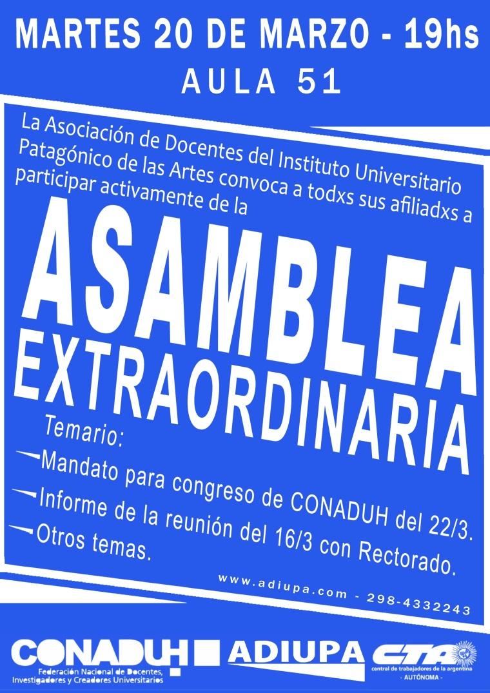 Cartel Adiupa - Asamblea 13 de marzo AZUL.jpg